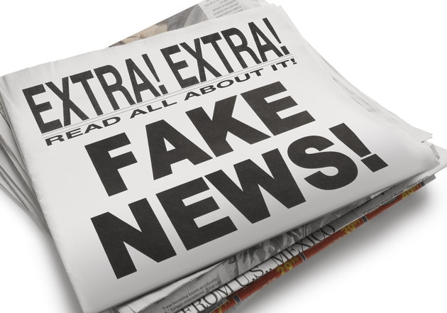 Why talking about 'disinformation' misses the point when considering radical right 'alternative' media